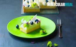 Мастер-классы по молекулярной кухне