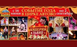Шоу «Империя львиц» в цирке «Автово»