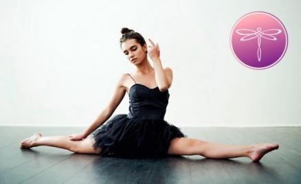 Балетная студия Art Body Ballet