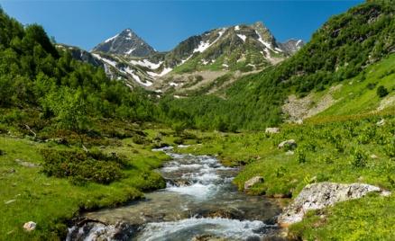 База «Сосновый рай» в горах Архыза