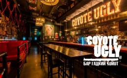 Американский бар «Гадкий Койот»