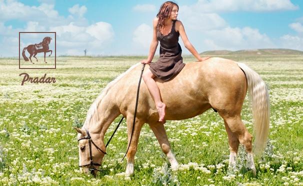 Скидка на Групповое или индивидуальное обучение верховой езде в конном клубе Pradar: 3 или 5 занятий в любой день. Скидка до 50%