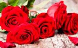 Букеты роз от «Дисконт-центра роз»