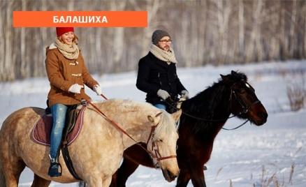 Конные прогулки в КСК «Тандем»