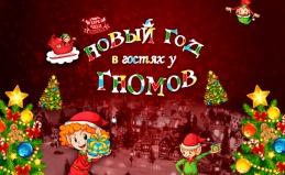 Шоу «Новый год в гостях у гномов»