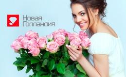 Цветы от компании «Новая Голландия»