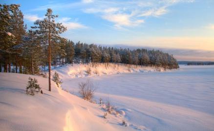 Экскурсии по Ленинградской области