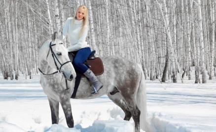 Прогулки на лошадях, квест-прогулки