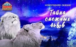 Шоу «Тайна снежных львов»