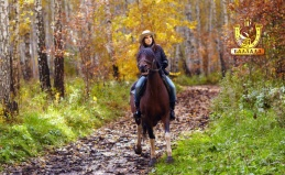 Масленица, конное шоу и не только