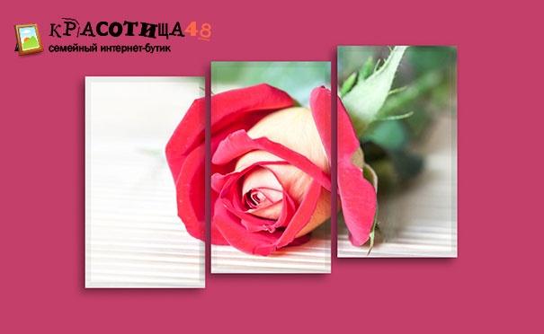 Скидка на Печать картин различных форм и размеров с вашими фотографиями от компании «Красотища 48». Скидка до 60%