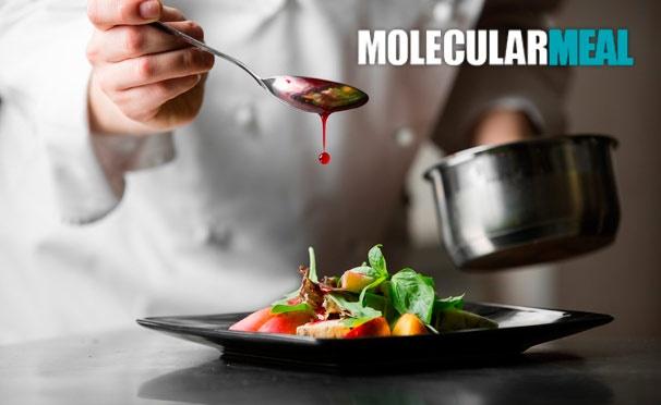 Скидка на Онлайн-курсы по молекулярной кухне с получением диплома от компании Molecularmeal. Скидка 50%