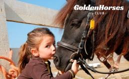 Экскурсия на ферму в конном клубе