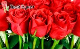 Розы от компании «Твой букет»
