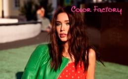 Color Factory: стрижка, окрашивание