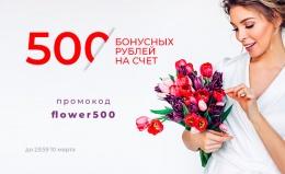 500р на бонусный счёт